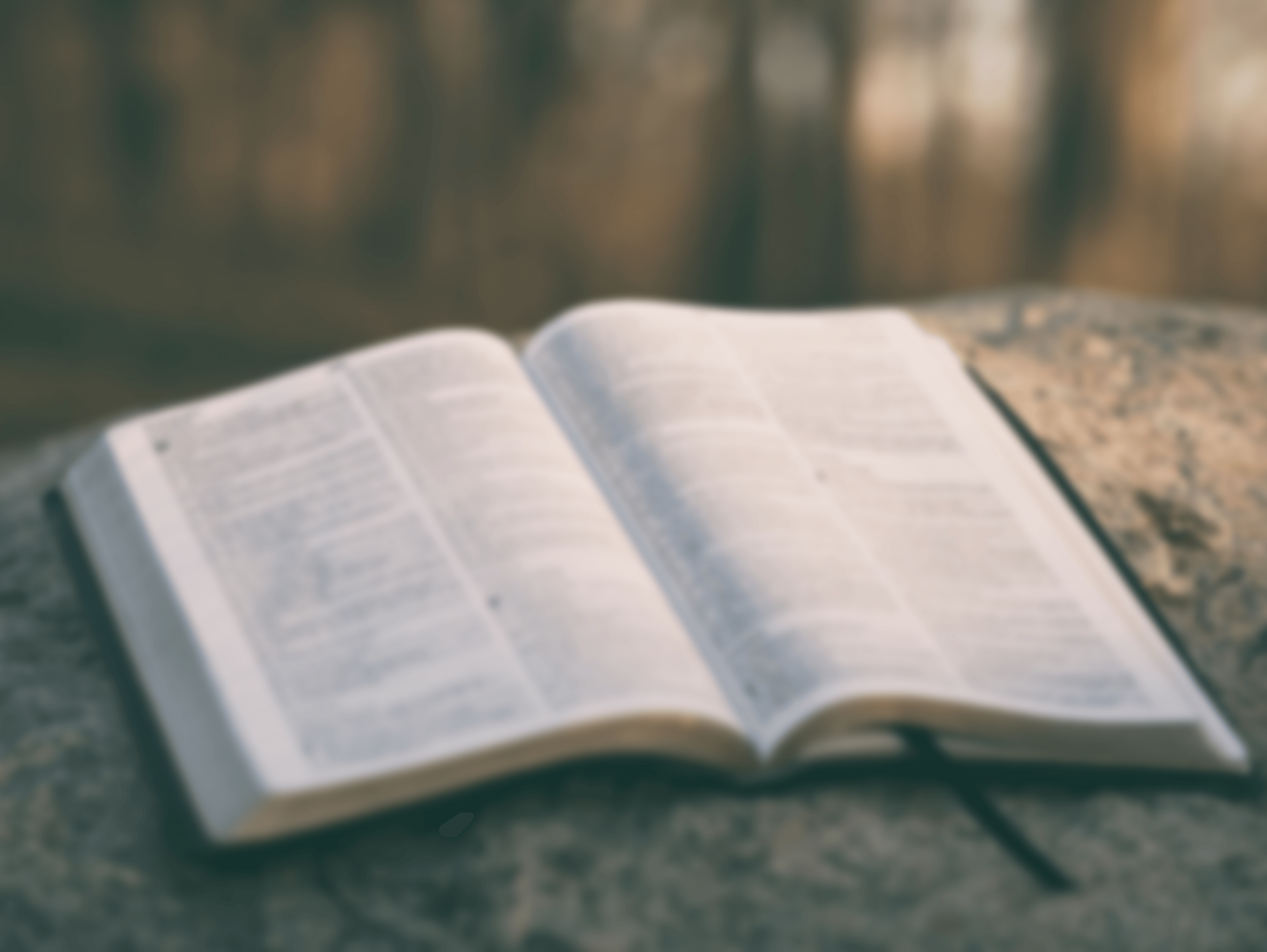 Prime Timers Bible Study - POSTPONED